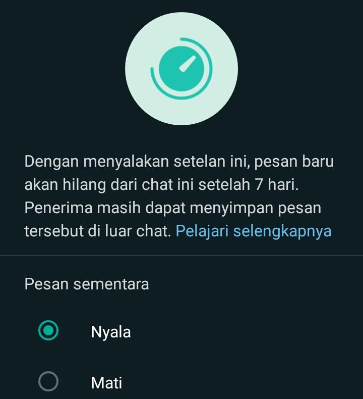 Cara Menggunakan Fitur Pesan Sementara Whatsapp, Mudah Sekali! 1