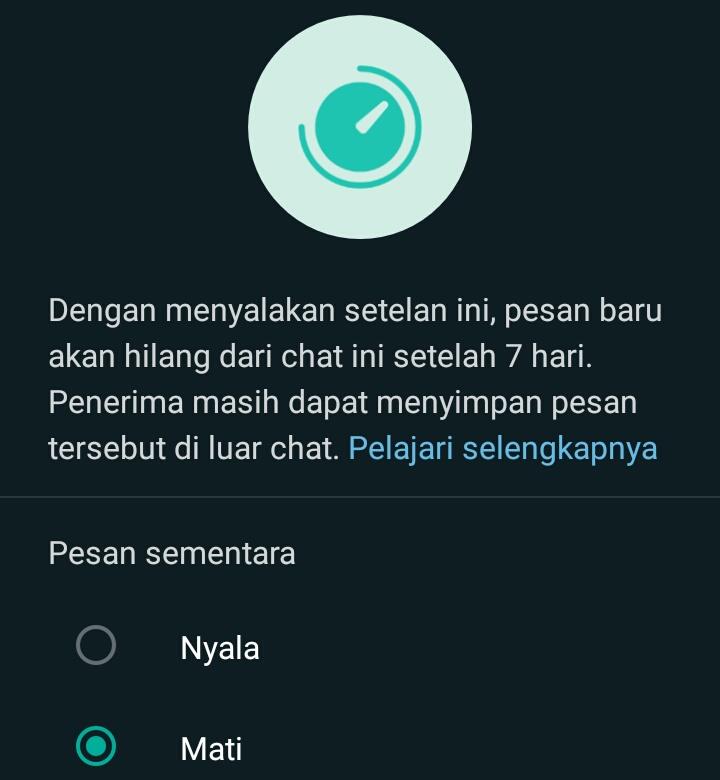Cara Menggunakan Fitur Pesan Sementara Whatsapp, Mudah Sekali! 2
