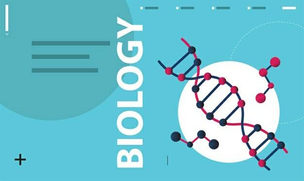 5 Aplikasi Belajar Biologi Terbaik untuk Siswa 1